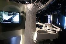 Terra Oleum Museo Activo Del Aceite De Oliva, Mengibar, Spain