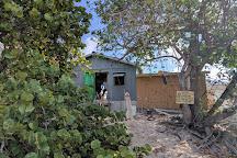 Black Coral Clinic, Grand Cayman, Cayman Islands