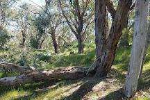 Jurlique Farm, Biggs Flat, Australia