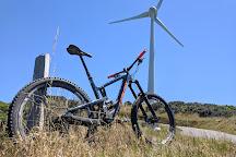 Wellington Wind Turbine, Wellington, New Zealand