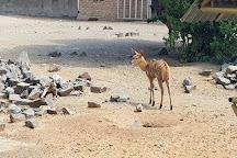 Bloemfontein Zoo, Bloemfontein, South Africa