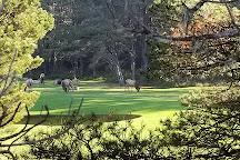 Manzanita Golf Course, Manzanita, United States