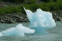 Alaska Cruise Transportation - ACT, Anchorage, United States