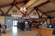 Osprey's Dominion Vineyards, Peconic, United States