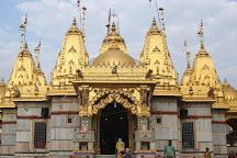 Shree Swaminarayan Mandir-Vadtal, Nadiad, India