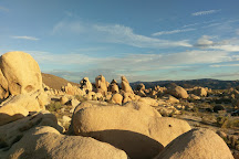Arch Rock, Joshua Tree National Park, United States