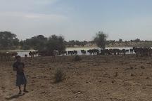 Koumbi Saleh, Hodh Ech Chargui Region, Mauritania