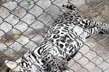 La Marina Wildlife Rescue Center, Alajuela, Costa Rica
