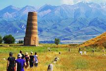 Anur Tour, Tashkent, Uzbekistan