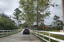 Hacienda Madrigal, Cidra, Puerto Rico