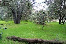 Guadalupe Oak Grove Park, San Jose, United States