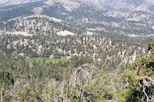 Mount Rose, California, United States