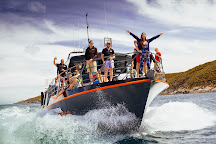 Adventure Bay Charters, Port Lincoln, Australia