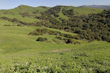 Wildcat Canyon Regional Park, Richmond, United States