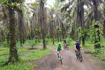 Krabi Eco Cycle, Krabi Town, Thailand