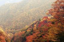 Mt. Kushigata, Minami Alps, Japan