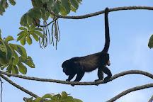 506 Expeditions, Alajuela, Costa Rica