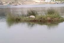 Chambal River Safari, Dholpur, India