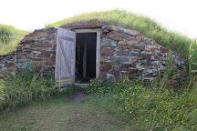 The Elliston Puffin Site, Elliston, Canada