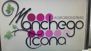 Vinos Manchego Ticona 8