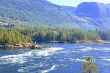 Skookumchuck Narrows Provincial Park, Egmont, Canada