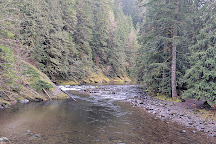Salmon River Trail, Welches, United States