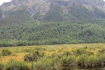 Mirror Lakes Walk, Fiordland National Park, New Zealand