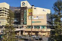Amagasaki Q's MALL, Amagasaki, Japan