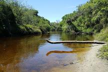 Rye Preserve, Bradenton, United States