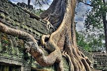Angkor Asia Tours, Siem Reap, Cambodia