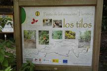 Los Tilos de Moya, Moya, Spain