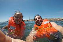 Isla de Lobos, Punta del Este, Uruguay