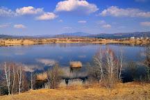 Lake Kočevje, Kočevje, Slovenia