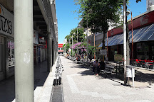 Peatonal Drago, Bahia Blanca, Argentina