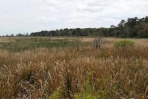 Hofwyl-Broadfield Plantation, Brunswick, United States