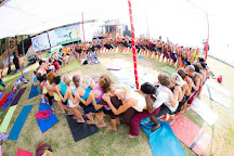 Yoga Teacher Training with Noah Mckenna, Aldona, India