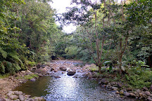 Chaudiere Pool, Bense, Dominica