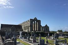 Ardfert Cathedral, Ardfert, Ireland