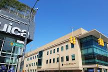 Urban Institute for Contemporary Arts (UICA), Grand Rapids, United States