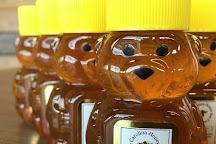 Carolina Honey Bee Company, Travelers Rest, United States
