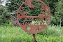 Moose Lake State Park, Moose Lake, United States