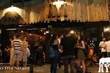 Ayi Pub, Istanbul, Turkey