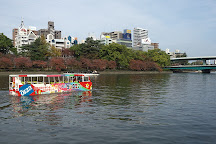 Osaka Duck Tours, Chuo, Japan