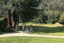 Tilden Nature Area, Oakland, United States