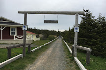 Skerwink Trail, Port Rexton, Canada