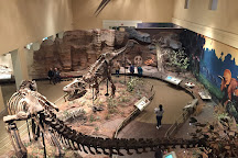 Carnegie Museum of Natural History, Pittsburgh, United States