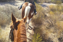 Arizona Horse Company, Wickenburg, United States