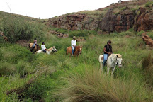 Horse Riding Adventures, Cullinan, South Africa