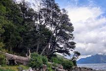 Tromen Lake, Junin de los Andes, Argentina