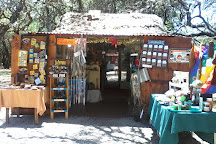 Algarrobo de los Aguero (Algarrobo Abuelo), Merlo, Argentina